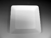2509 - Class Square Plate