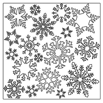 12 x 12 - Flurries-164